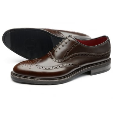 Mens Demon Oxford Brogue Shoe in Dark Brown